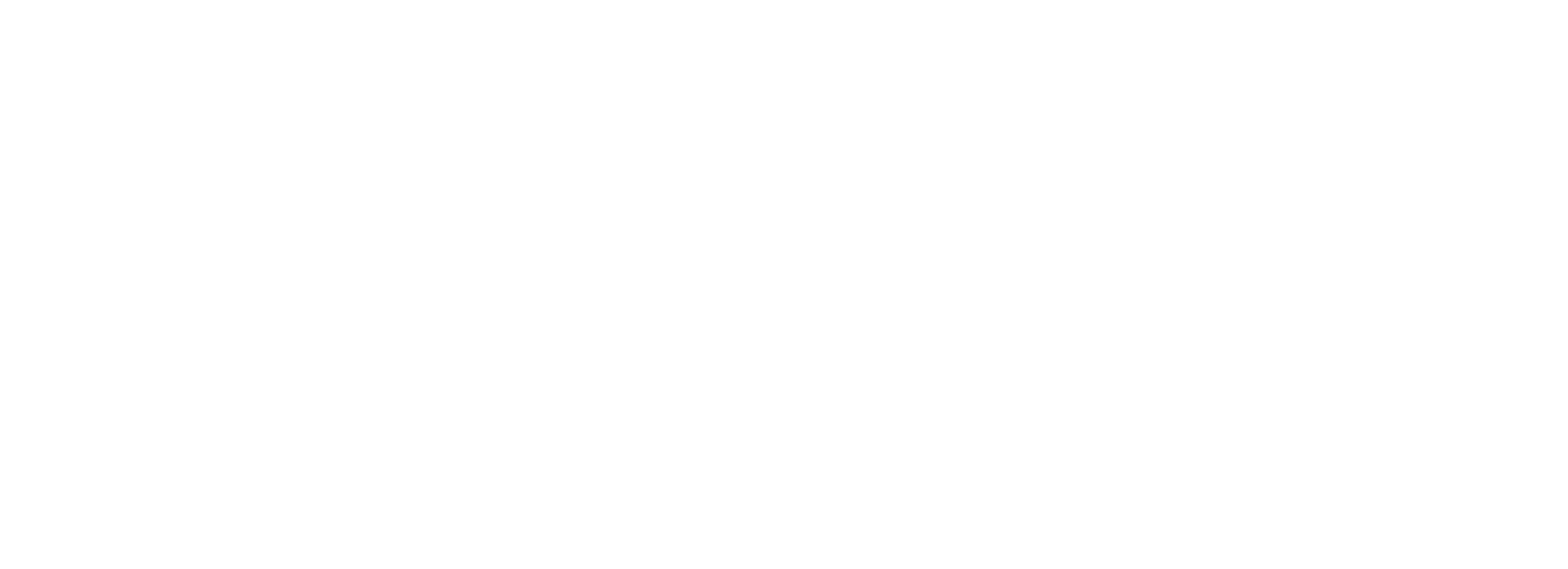 Texas elite logo 3 1 copy