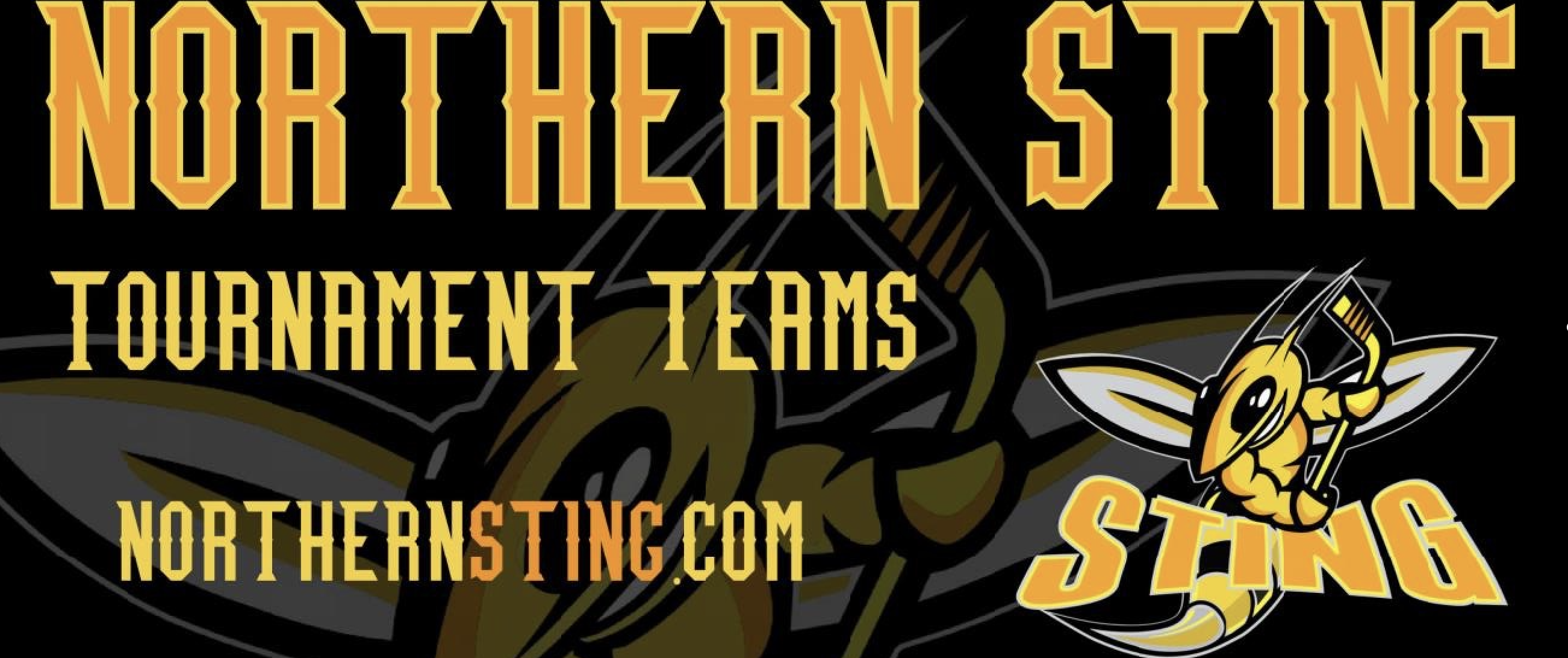 Sting banner cropped