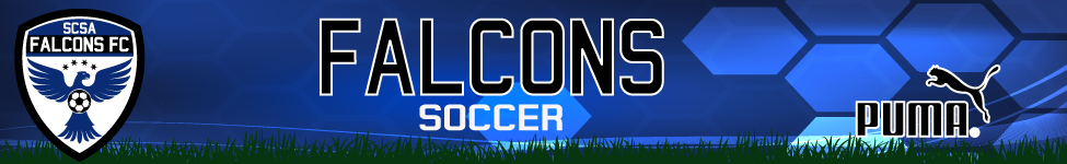 Scsa-falcons-banner