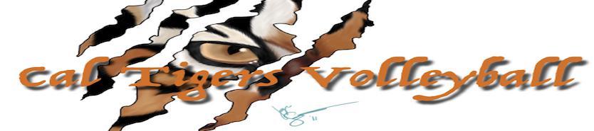 Cal tigers logo 1.001