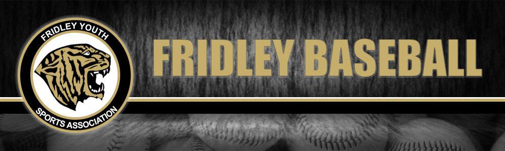 Banner13.baseball.draft2