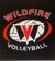 Wildfire Volleyball Academy