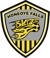 Honeoye Falls Blaze  Travel Soccer