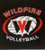 Wildfire Volleyball Academy