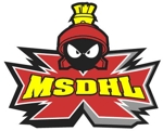 Msdhl logo 11.30