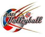 Aau volleyball logo