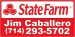 Statefarm_caballero