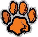 Orange and black tiger paw