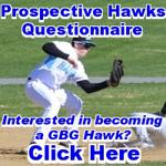 Prospectivehawk2
