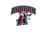Auburntransparent