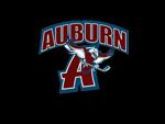 Auburntransparent