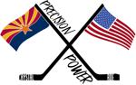 Precision power skating logo