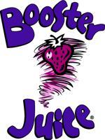 Bj logo v purple pantone