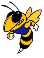 Mshsl114618good hornet