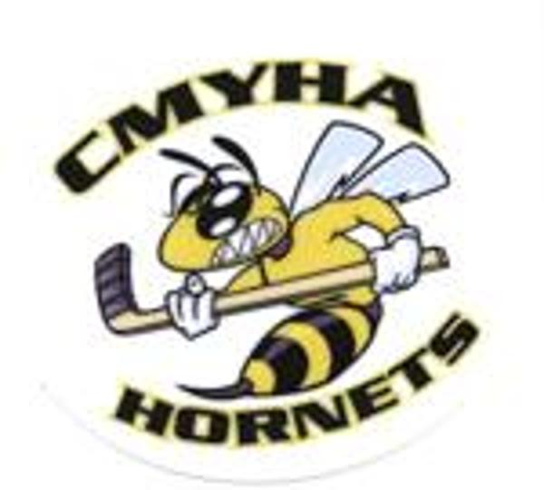 Cmyha Hornet Decals Available