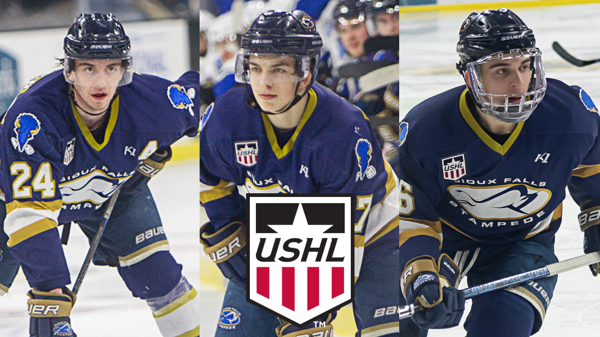 Three Stampede Players Receive All Ushl Honors