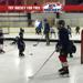 Try Hockey for free with hockey players