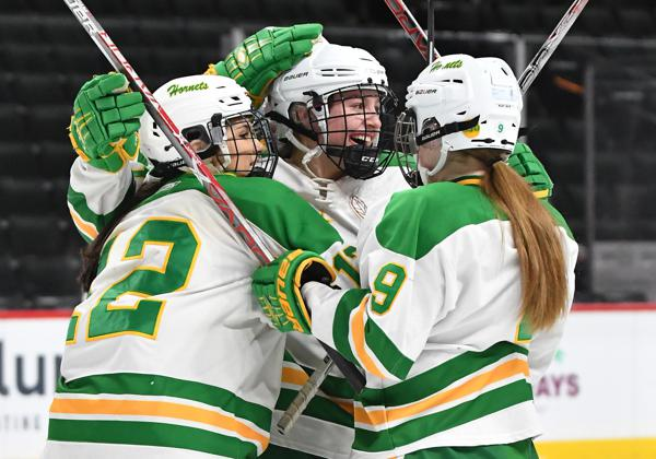 MN H.S.: Girls - Edina Dominates Eden Prairie, Advances To State Championship