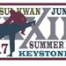 The Moo Sul Kwan Summer Expo XXXIII patch