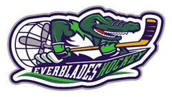 Everblades hockey small