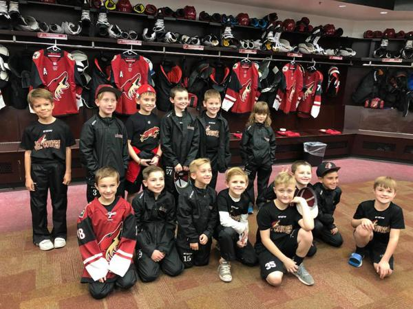 Amateur Hockey Association Coyotes