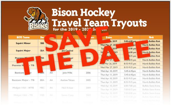 Bison Hockey 2019 - 2020 Travel Team Tryouts Schedule Posted