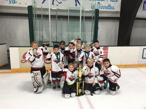 Mount pleasant amateur hockey association