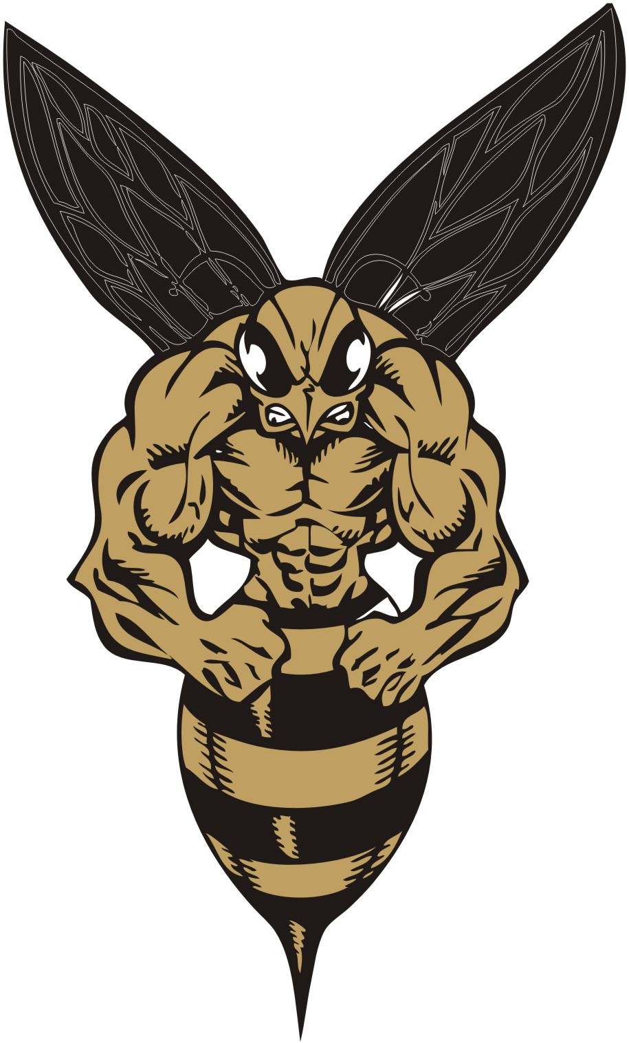 yellow jackets logo wwwpixsharkcom images galleries