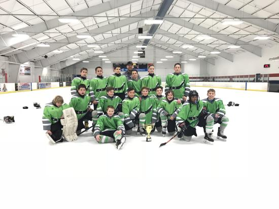 Precision Aaa Hockey