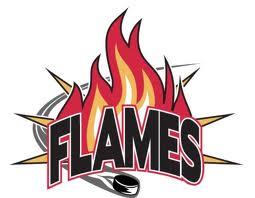 NEEBING FLAMES