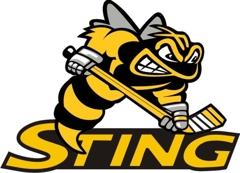 Troy Sting Travel Hockey