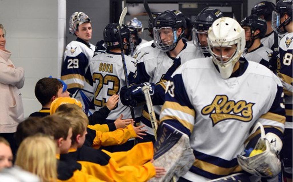 hockey team handshake image