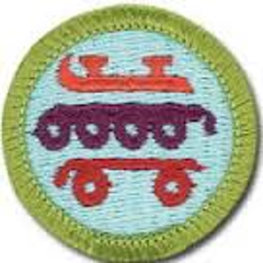Bsa Skate Merit Badge