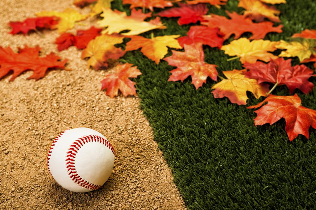 Image result for baseball field in the fall