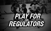 Play For Regulators