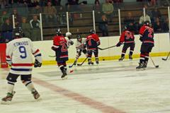 Genesee amateur hockey association