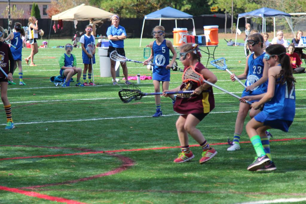 lacrosse official resume