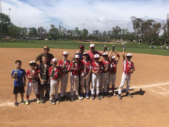 Irvine Pony Baseball