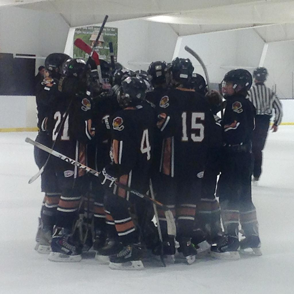 Peewee Major win a berth at the NYS Championship