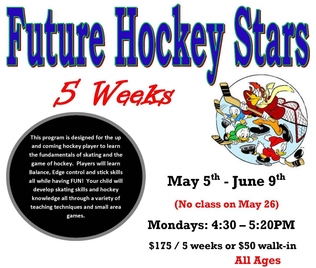 Future Hockey Stars Session 2