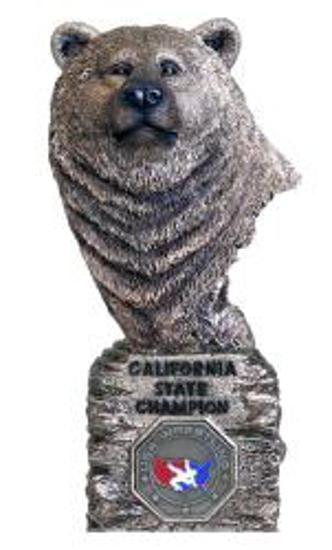 1st Place Championship Bear
