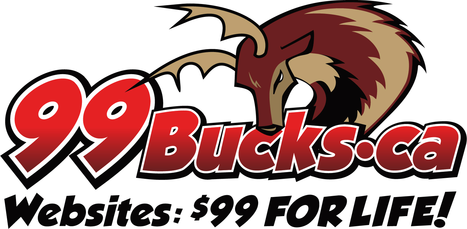 Website Design In Mississauga is Just $99 with 99Bucks.ca - Website Design In Toronto