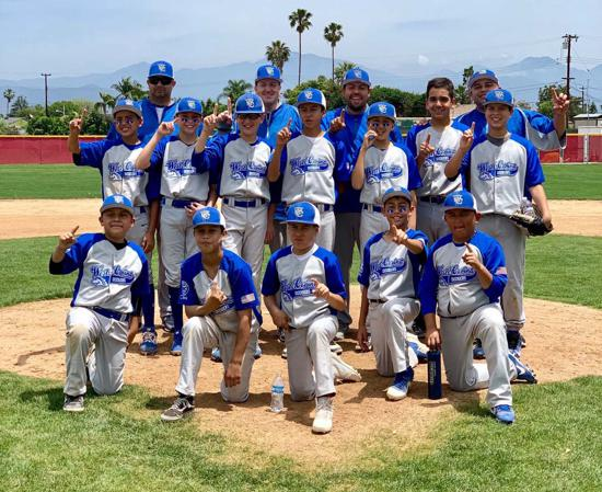 BRONCO DIVISION LEAGUE CHAMPS DODGERS