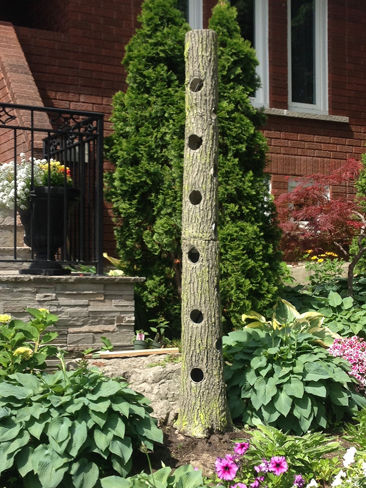 Nash Lobo - Tree Shaped Garden Planter - Mississauga Landscaping Company