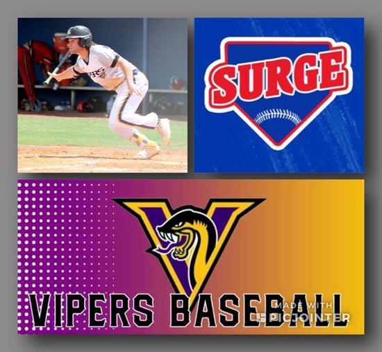 Vipers Baseball Club