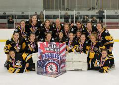 Home » Latest Events » 2018 » April » USA Girl's Hockey Nationals @ NESC  Marlborough, MA » gm241 Fri 540PM 1 Tier 1 19U Pittsburgh Penguins Elite vs  East ...