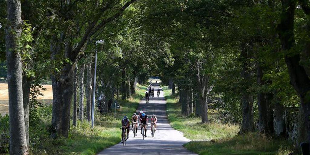 Triathletes biking down a wooded lane