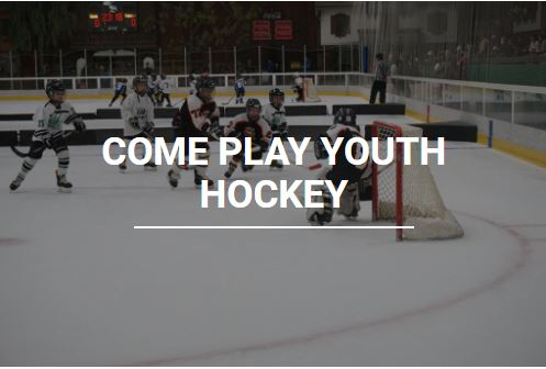 New Hampshire Amateur Hockey Association