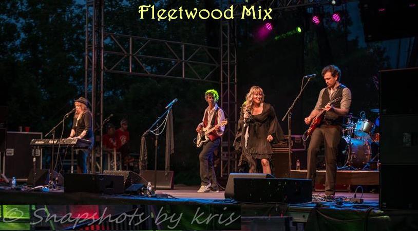 fleetwood-mix-a-fleetwood-mac-tribute-band-at-spot-1-grill-in-brampton-restaurant_1_