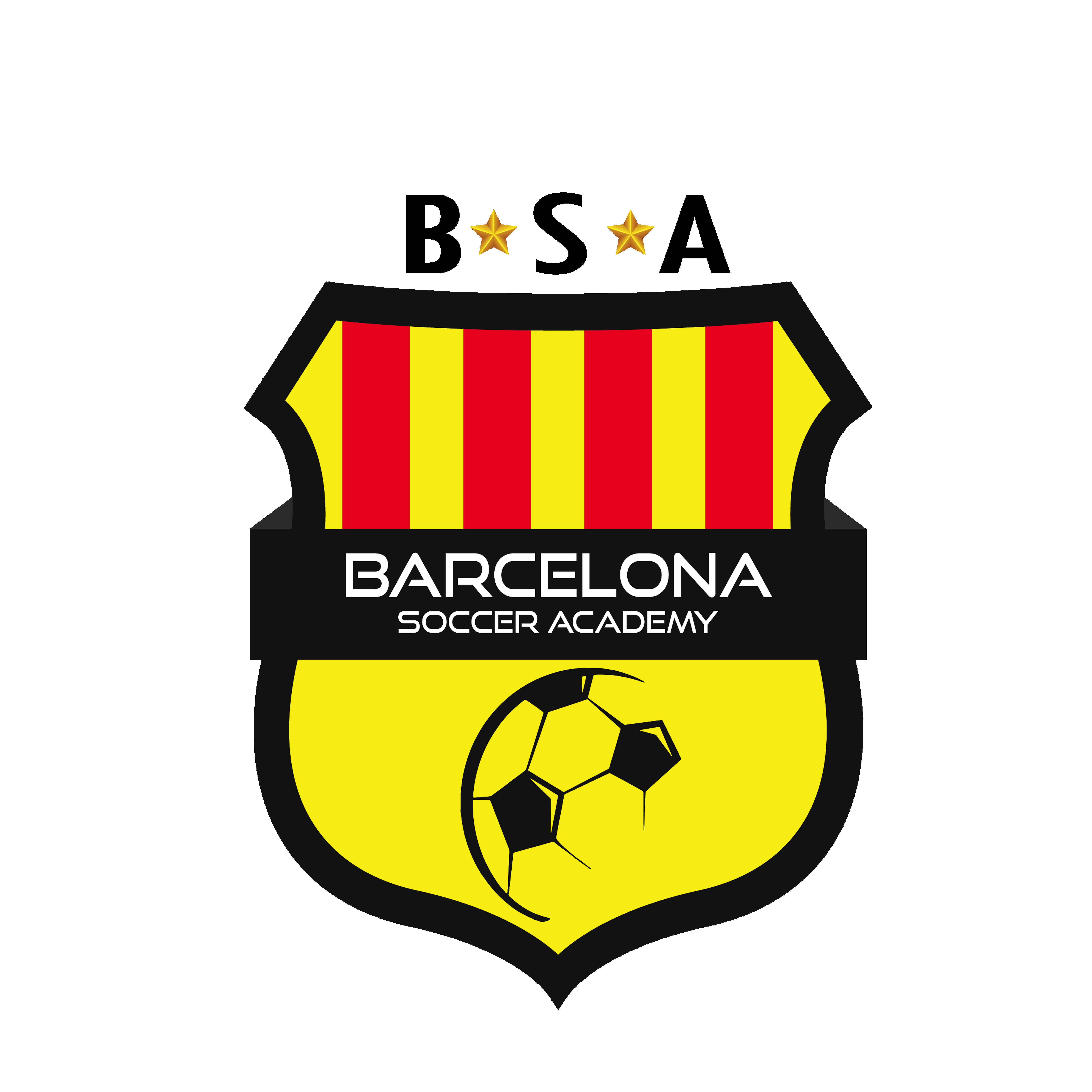 About Barcelona Soccer Academy Florida
